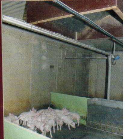 Ici, l'extraction se fait au coeur de la salle, grâce à ce caisson